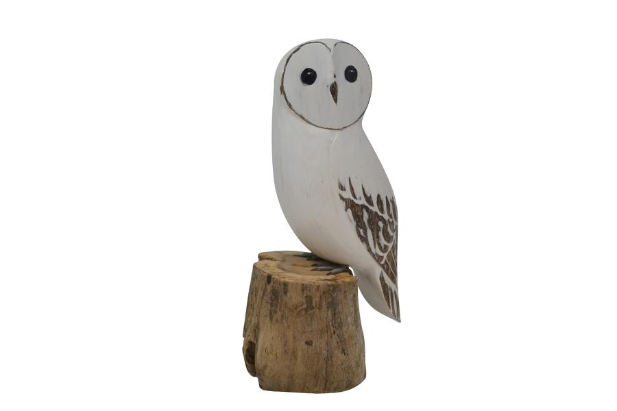 Large Painted Snow Owl