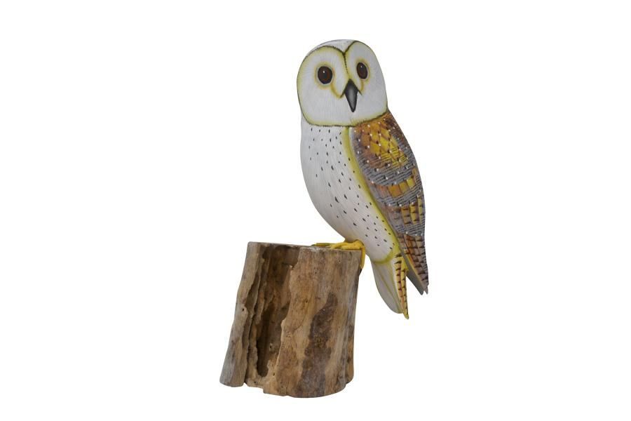 Large Painted Barn Owl