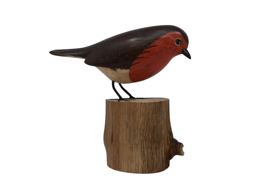 Painted Robin