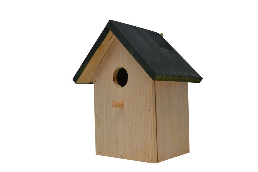 Green Roof Bird Box